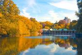 中心公园纽约州。美丽的公园在美丽 — 图库照片