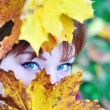 Autumn view — Foto Stock