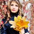 In autumn colors — Stock Photo