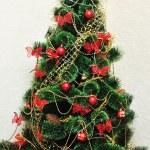 Christmas Tree — Stock Photo #9157979