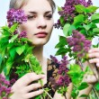In lilac blossom - Stock Photo