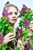 In lilac blossom — Stock Photo