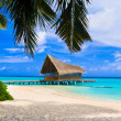 Diving club on a tropical island — Stock Photo
