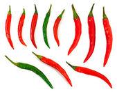 Red hot chili biber — Stok fotoğraf