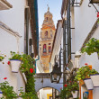 Flowers street at Cordoba Spain — Stock Photo