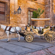 Traditional Horse and Cart at Cordoba Spain - Stock Photo