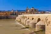 Bridge at Cordoba Spain — Stock Photo