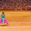 Постер, плакат: Matador in bullfighting arena at Madrid
