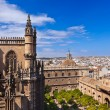 Cathedral La Giralda at Sevilla Spain — Stock Photo #10513843