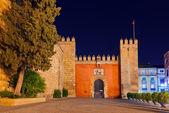 Gates to Real Alcazar Gardens in Seville Spain — Stock Photo