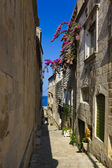 Street at Corcula, Croatia — Stock Photo