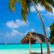 Swing on a tropical beach — Foto de Stock