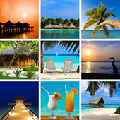 Collage of summer beach maldives images — Stock Photo