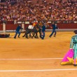 Matador and dead bull in bullfighting at Madrid - Stock Photo