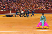 Matador and dead bull in bullfighting at Madrid — Stock Photo