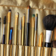 Set of professional cosmetic brushes, make up brushes — Stock Photo