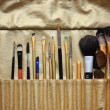 Set of professional cosmetic brushes, make up brushes - Stock Photo
