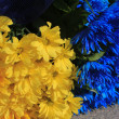 Stock Photo: Yellow and blue flower background