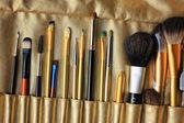设置的专业化妆刷、 弥补画笔 — 图库照片
