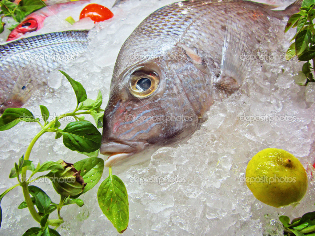 Poisson frais congel photographie viktor4ik 8991747 - Cuisiner poisson congele ...