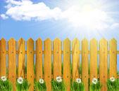 木製の太陽の光とフェンスと白の flowers.sunner 風景 — ストック写真