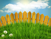 Wood fence and green grass meadow.Summer landscape with sun ligh — Stock Photo