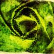 Abstract grunge green background for design - Stockfoto