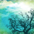Grunge nature background with tree — Stock Photo