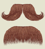 Mustaches for man — Stock Vector