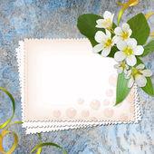 Congratulations Card — Stock Photo