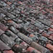 Old roof tiles covered with lichen and moss — Stock Photo