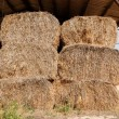 Foto Stock: Haystacks at the agricultural farm stored for animal feed