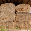 Haystacks at the agricultural farm stored for animal feed - Stock Photo