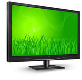 Monitor with green grass — Stock Vector