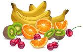 Zbiór owoców — Wektor stockowy