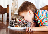 Boy with the cake — Stock Photo