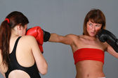 Boxing women — Stock Photo