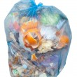 Garbage bag — Stock Photo #8833030