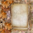 Stock Photo: Autumn frame of oak leaves on grange background.