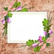 Flowered framework for greeting, congratulations or invitation — Stock Photo