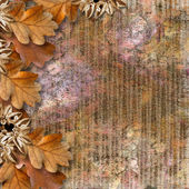 Autumn frame of oak leaves on a grange background. — Stock Photo