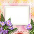 Multicoloured backdrop for greetings or invitations with bunch o — Stock Photo #8105023