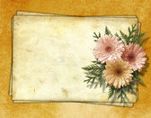 Old paper chrysanthemum on the abstract background. — Stock Photo