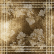 The vintage background with elegance border. — Stock Photo