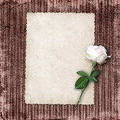 Page for photo or invitation on the vintage background. — Stock Photo
