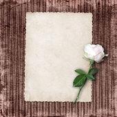 Pagina per foto o invito sullo sfondo vintage. — Foto Stock