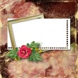 Framework for a photo or congratulation with red rose bouquet. — Stock Photo