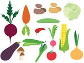 Set van groenten — Stockvector