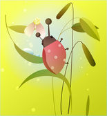 1142-Ladybird on a flower — Stock Vector