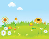 Blooming lawn background — Stock Vector